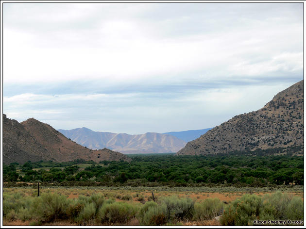 Natural Resources in the Kern River Valley